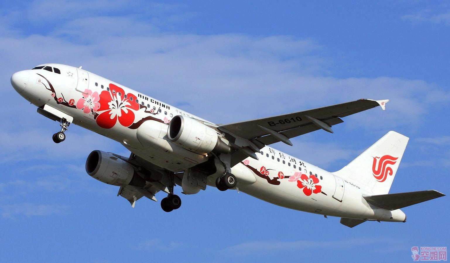 2010年中国民航运营飞机退役情况